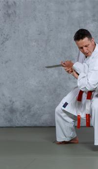 tai jitsu techniques