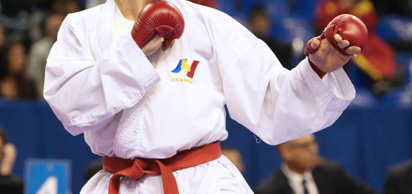 Sélection Equipe de France de Karaté / Actualité