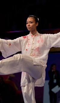 Wushu / Arts Martiaux Chinois