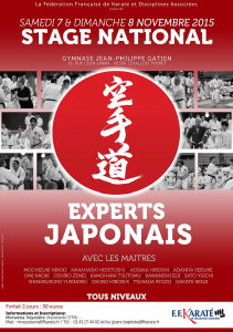 Stage_National_Experts_Japonais_Levallois_2015_Visu