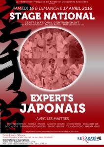StageNationalExpertsJaponais_Avril2016_Visu