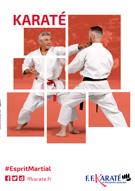 affiche_ffkda2016_karate