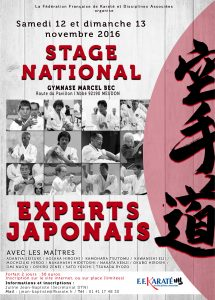 stage_national_experts_japonais_2016_visu