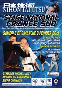 Affiche nihon Stage Grand Sud 2019 BR